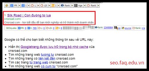 Cách kiểm tra PageRank fake