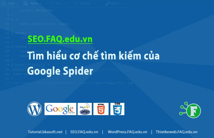 Tìm hiểu cơ chế tìm kiếm của Google Spider