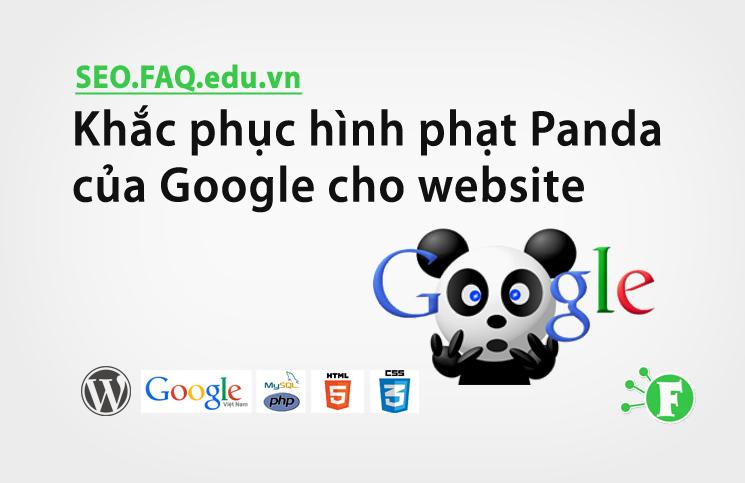 Khắc phục hình phạt Panda của Google cho website
