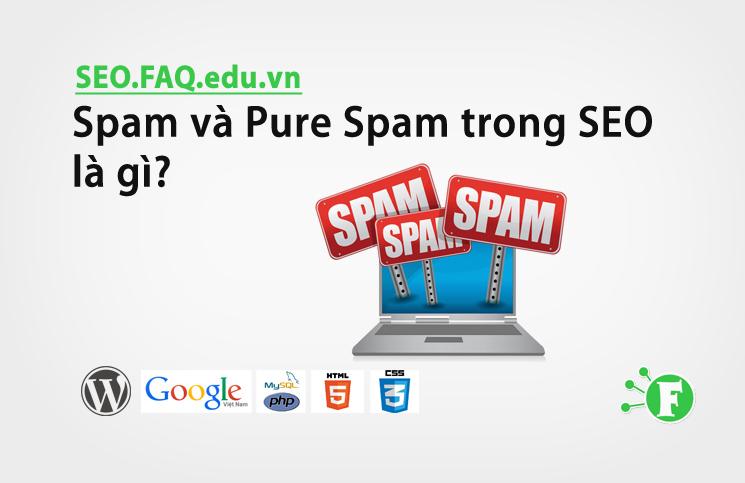 Spam và Pure Spam trong SEO là gì?