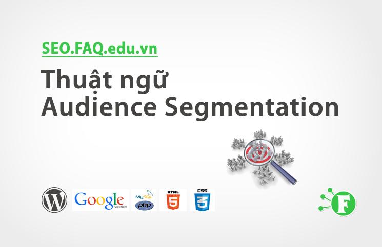 Thuật ngữ Audience Segmentation