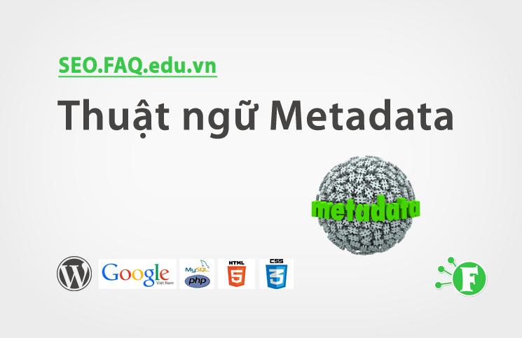 Thuật ngữ Metadata